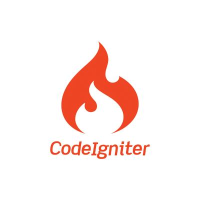 codeignitor web site design service