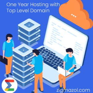 zigma solution domain and hosting service